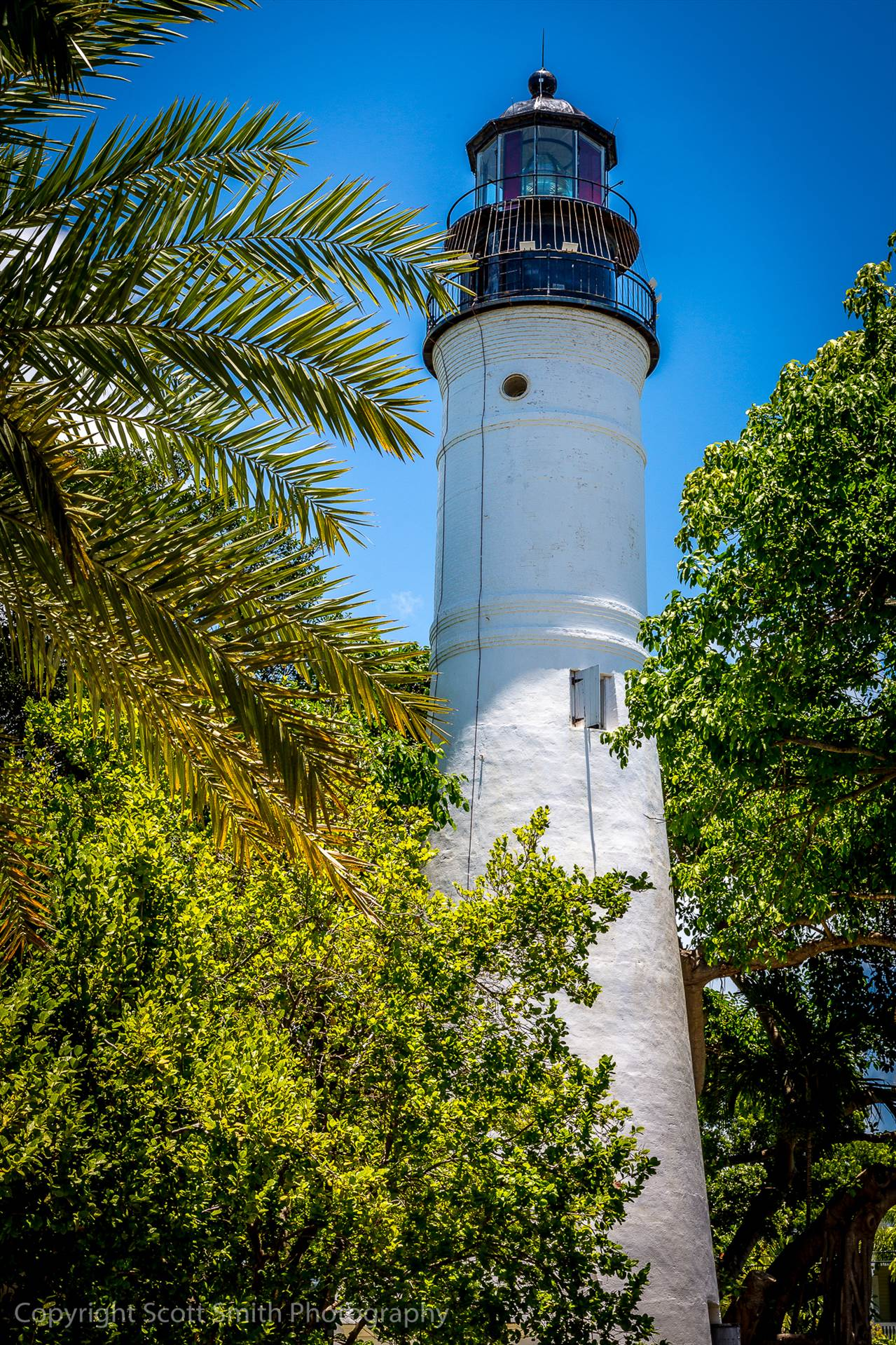 Key West Lighthouse - Across from Hemingway's house in Key West, Florida by D Scott Smith