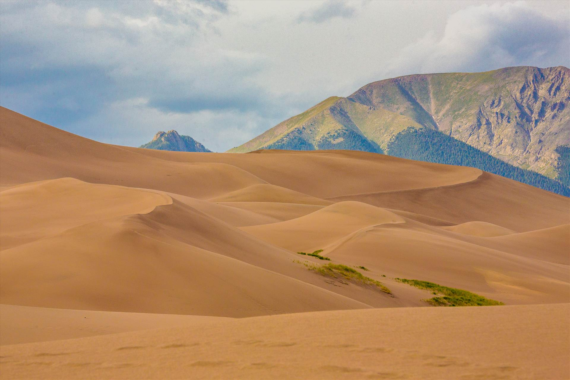 Great Sand Dunes 1 -  by D Scott Smith