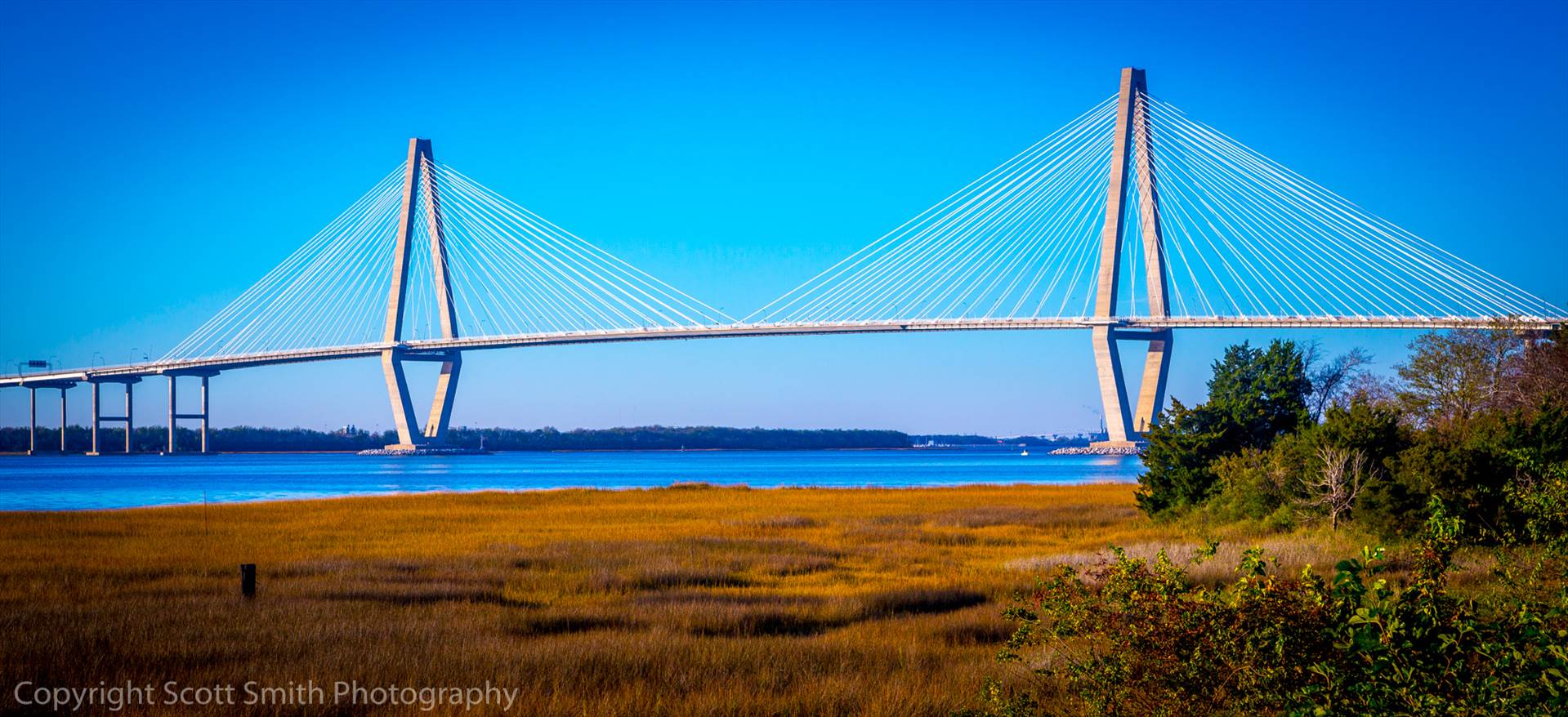 Arthur J Ravenel Bridge in Charleston -  by D Scott Smith