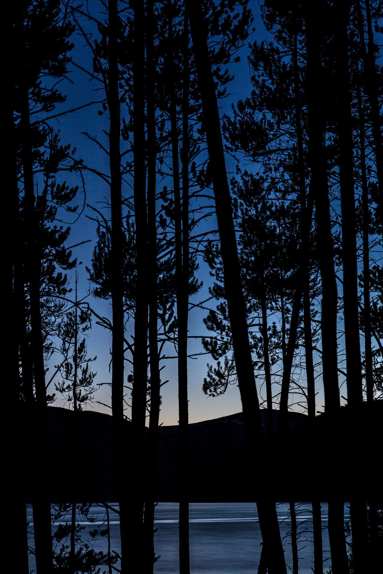 Through the Woods - Turqouise through the trees, Lake lit by the last of the sunlight, as seen from our campsite. by D Scott Smith