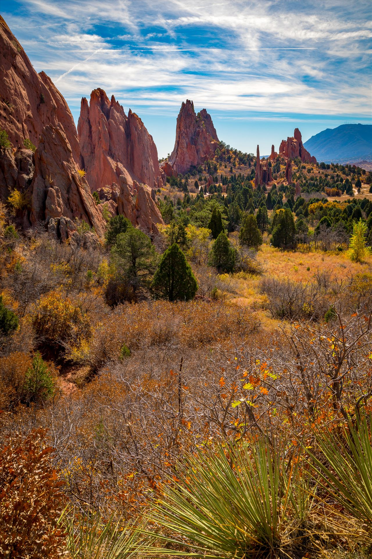 Garden of the Gods Spires - The spires at the Garden of the Gods. by D Scott Smith