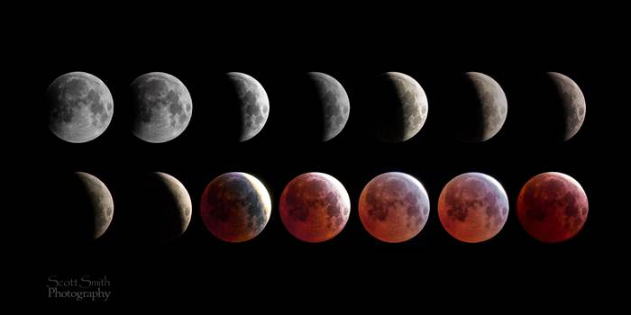 A collage of 14 images from the spring 2015 lunar eclipse, showing the different phases of the moon.