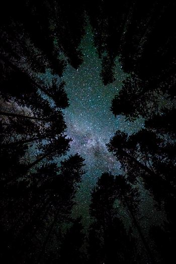A beautiful view of the milky way from our campsite at Turquoise Lake, Leadville Colorado.