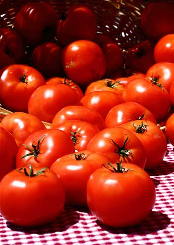 Preview of Tomatoes