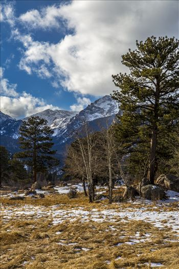 Winter's begun, taken just off Bear Lake Road in the Rocky Mountain National Park.