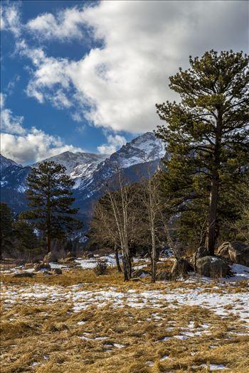 Preview of Winter at Bear Lake Road