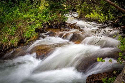 Preview of Bear Lake Trail 9