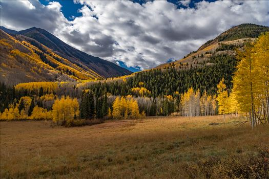 Preview of Fall in Aspen Snowmass Wilderness Area No 1