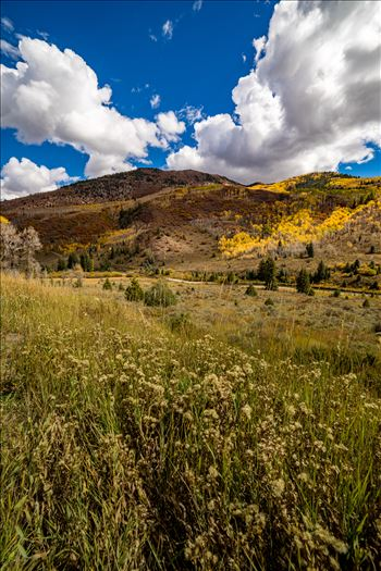 Summer grasses give way to fall colors between Redstone and Marble, Colorado.