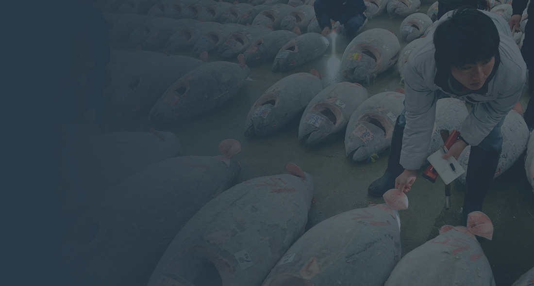 We are seeking to identify relevant software and technology solutions to track Key Data Elements (KDEs) and enhance seafood supply chain transparency in artisanal and industrial fisheries.