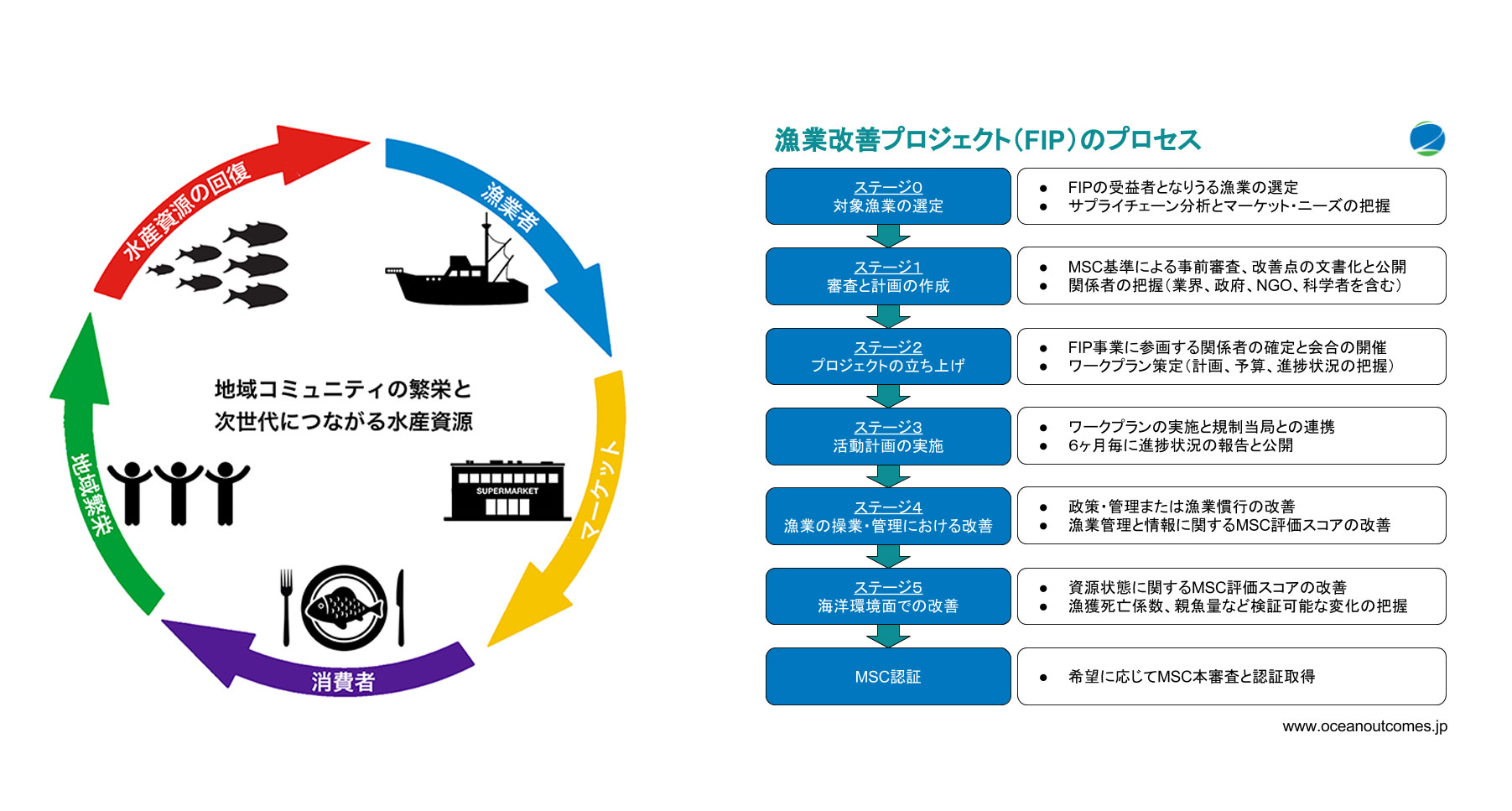 Sustainable Seafood Process Circle 漁業改善プロジェクト(FIP)のプロセス