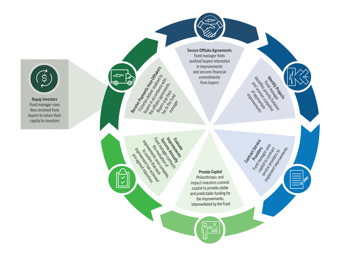 Sustainable Seafood Fund process graphic