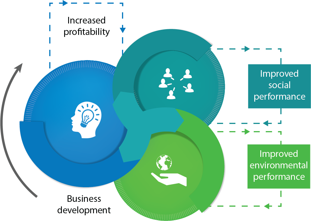 Triple impact improvement process graphic