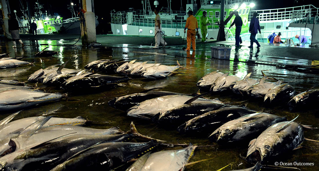 Opportunities for Sustainable Fisheries in Japan