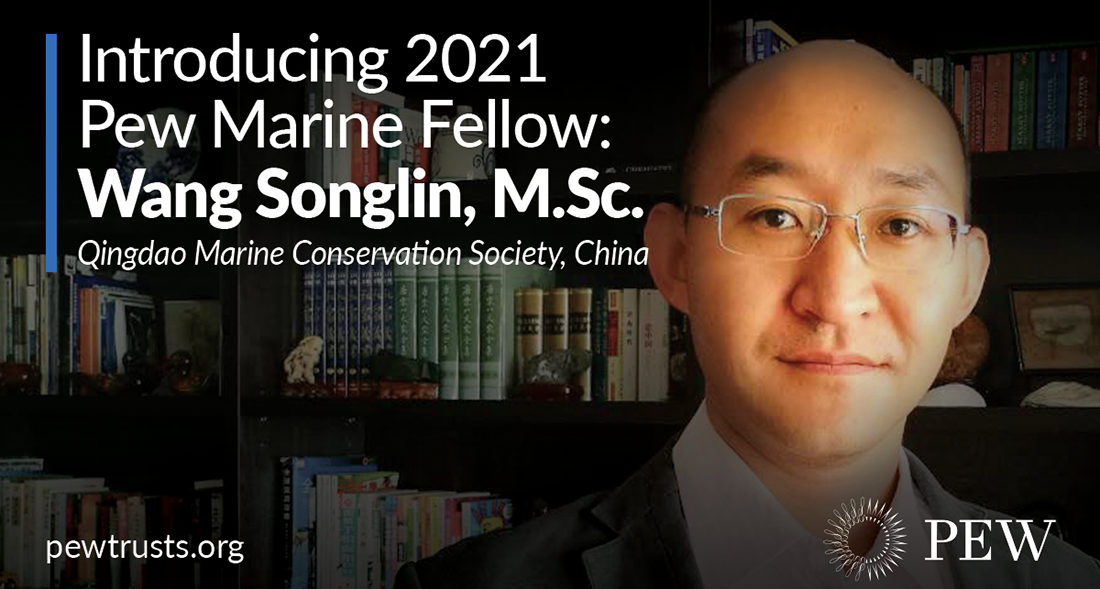 Songlin Wang Awarded Pew Fellowship to Support the Conservation of China's Largest Eelgrass Habitat