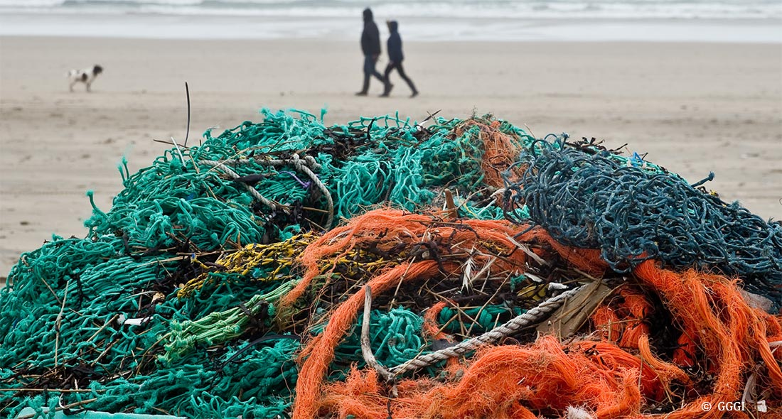 Each year an estimated 640,000 tons of fishing gear is lost or abandoned in oceans, estuaries, and bays.