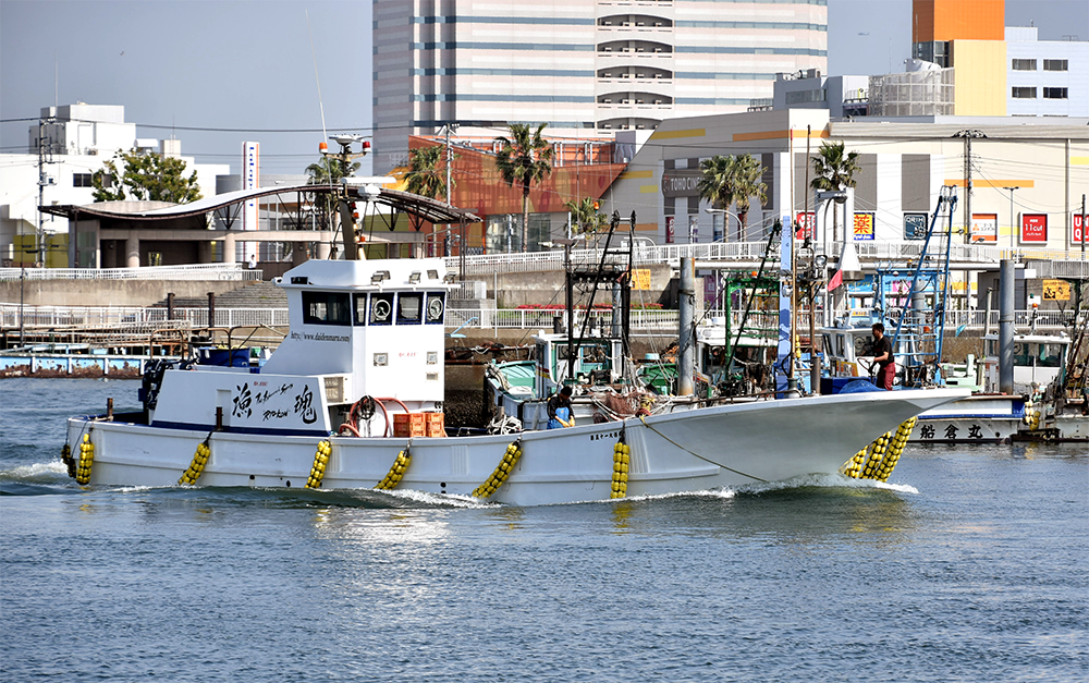 Tokyo Bay sea perch fishing boat