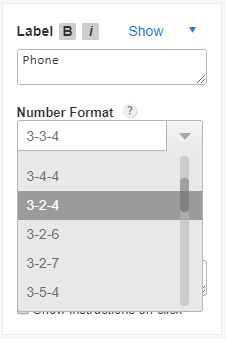 formatting international phone number field