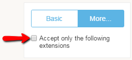limit file extension on upload form