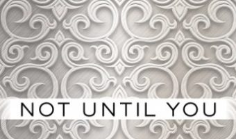 Not Until You Part III: Not Until You Crave (Loving on the Edge Series Book 3) by Roni Loren