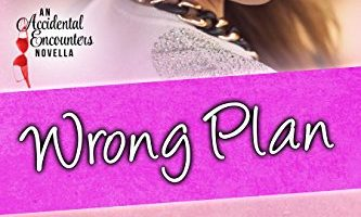 Wrong Plan (Accidental Encounters Book 3) by Geri Foster