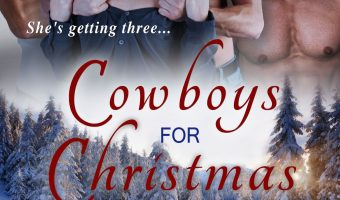 FEATURED BOOK: Cowboys for Christmas: A Romance Menage Western Contemporary (Cowboys Online Book 1) by Jan Springer