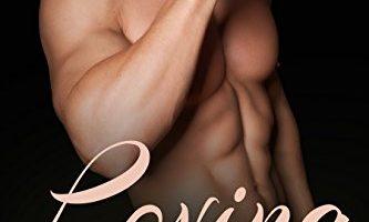 Loving The Rancher: 2 by Julie Allen