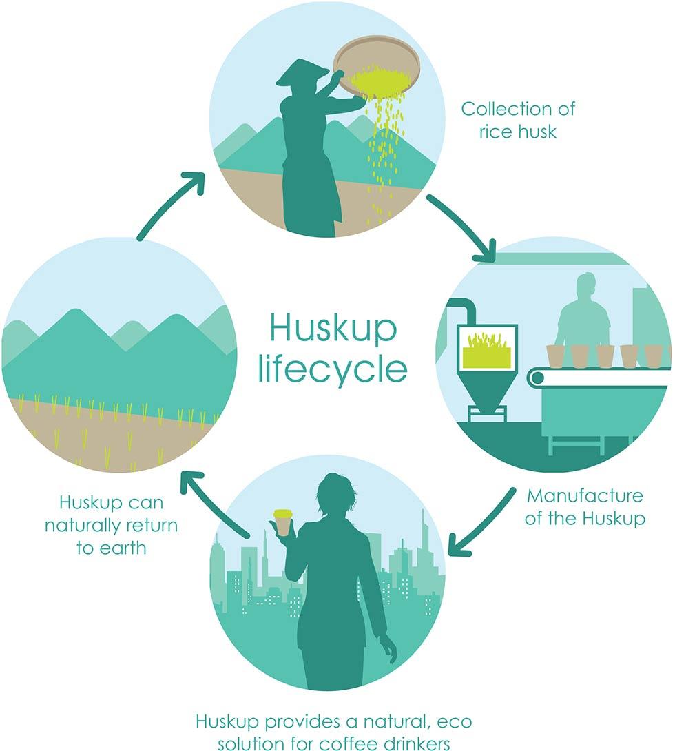 huskup-life-cycle.jpg