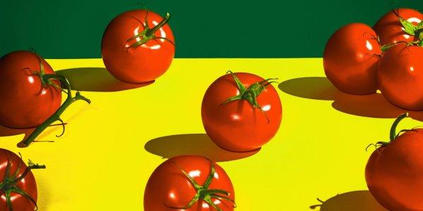 mutant tomatoes