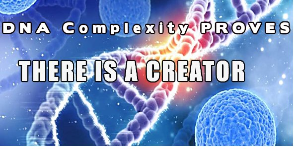 DNA COMPLEXITY PROVES THERE IS A CREATOR