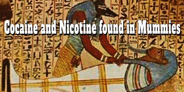 THE COCAINE CONNECTION BETWEEN ANCIENT EGYPT AND THE AMERICAS