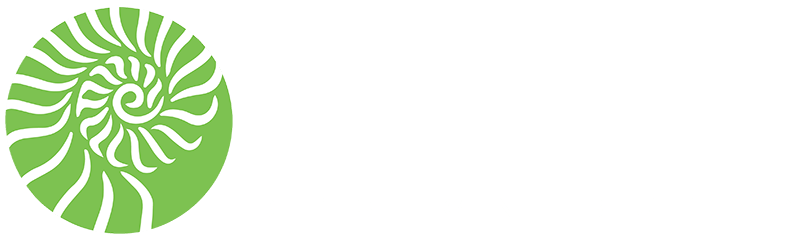 structural_concepts