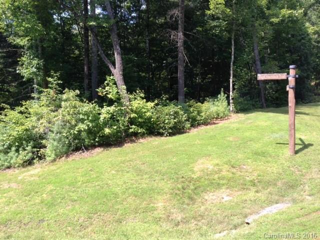 L 46 Mountain Brook Trail