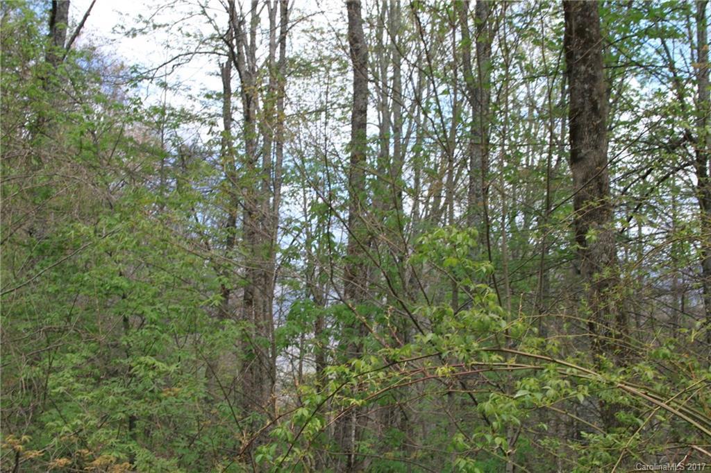 0000 Big Spring Trail