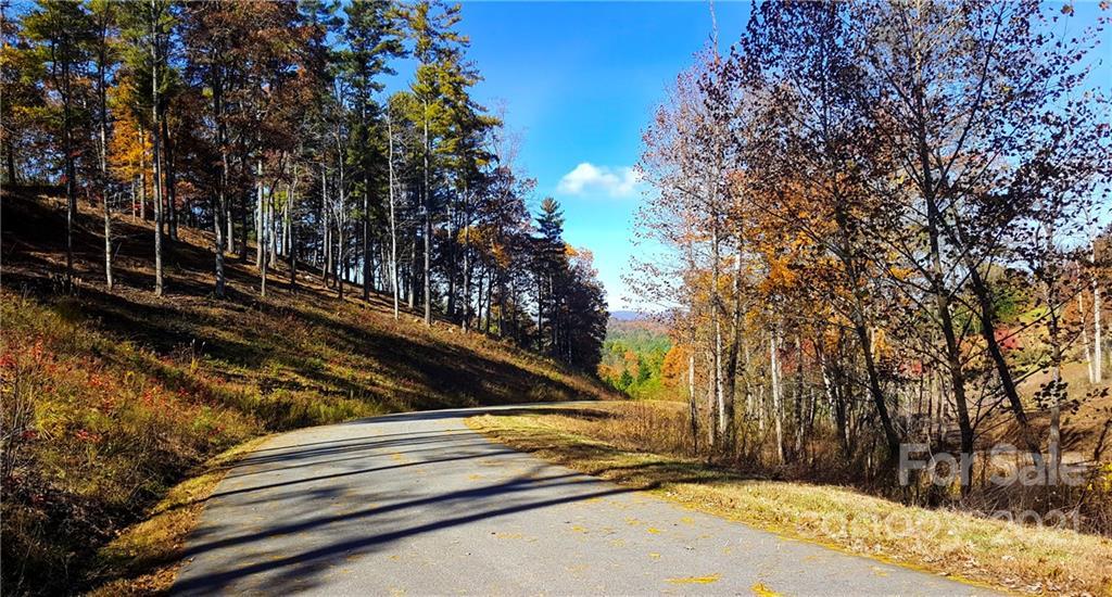 81 Timber Ridge Circle