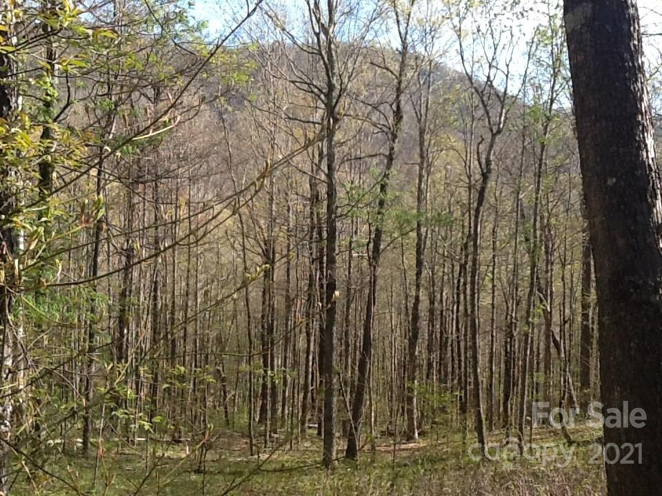 114 A Chimney Ridge Trail
