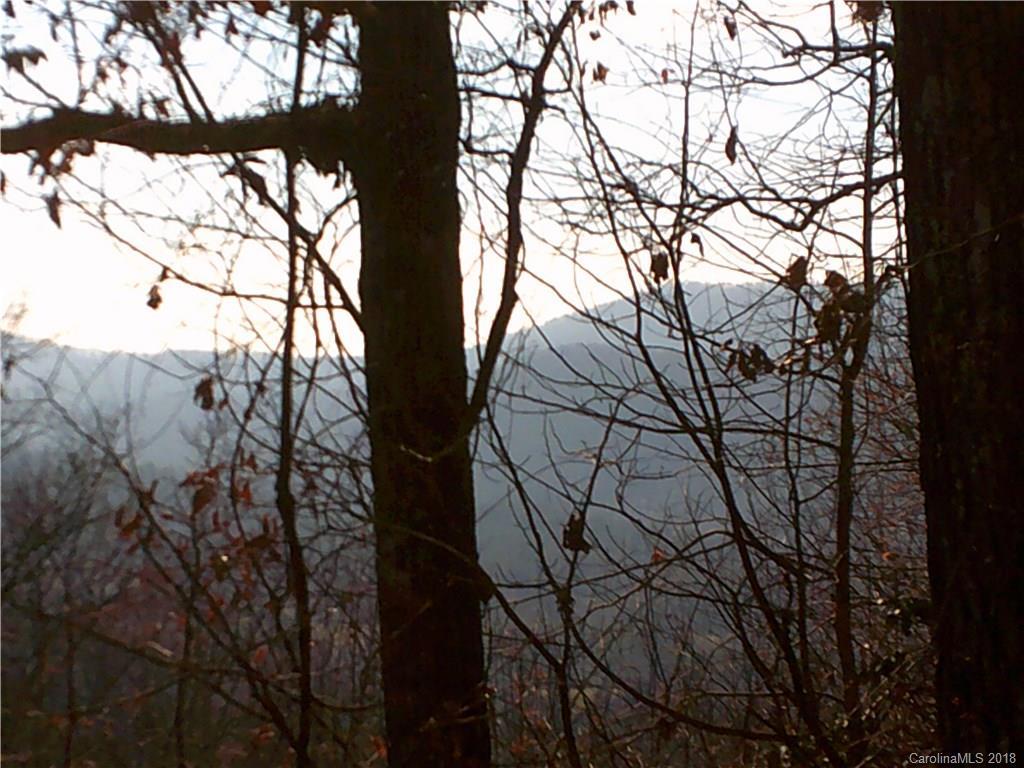 204 Rambling Trail