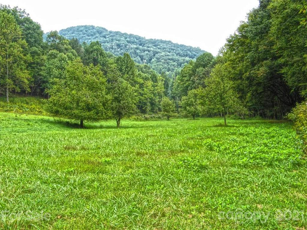 000 Indian Camp Creek Road