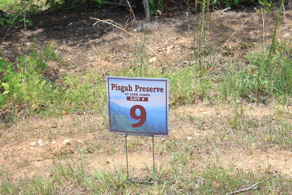V/L #9 Pisgah Preserve Drive