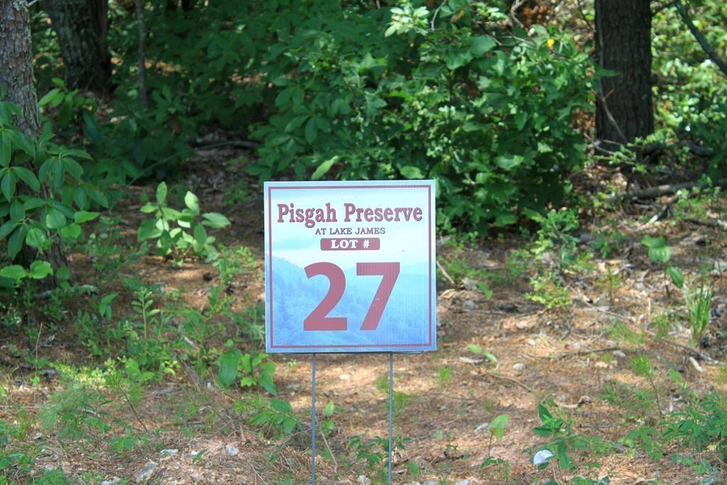 V/L 27 Pisgah Preserve Drive
