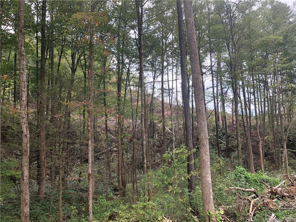 0 Kirby Mountain Road