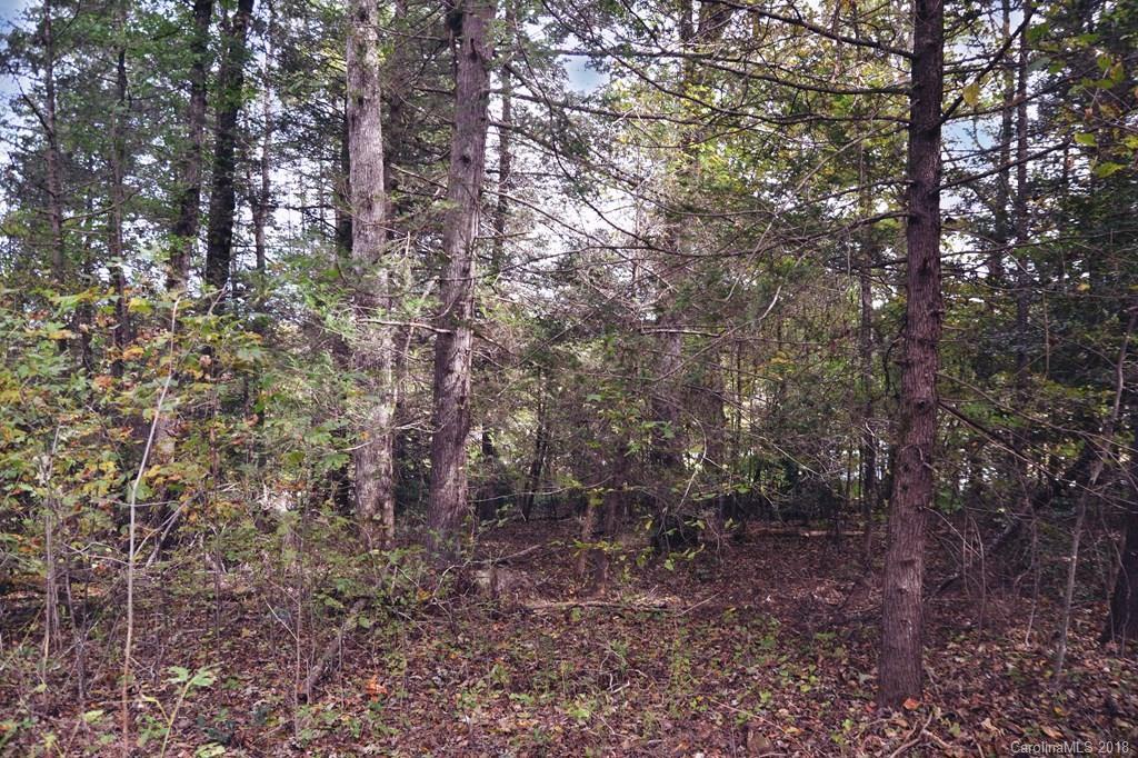 V/L Pleasant Woods Drive