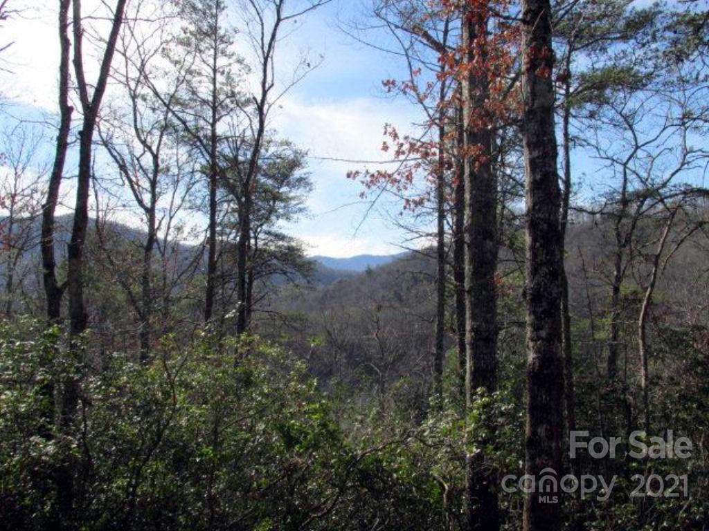 33 Wild Top Trail