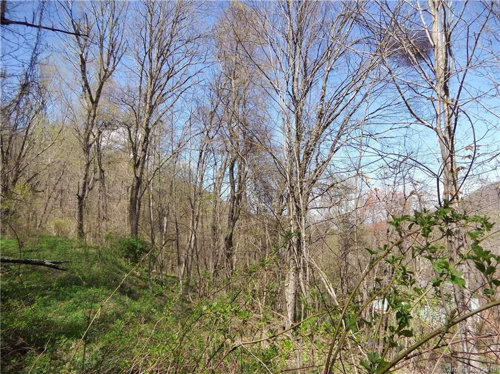 Lot off South Cove Road