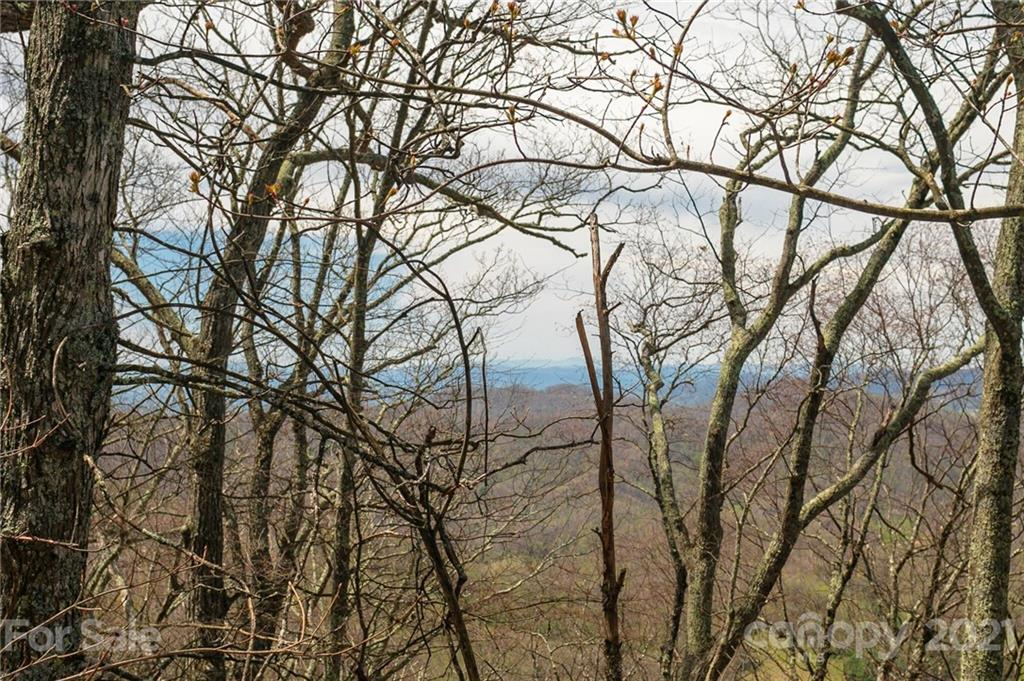Lot 84 Ridge Point View
