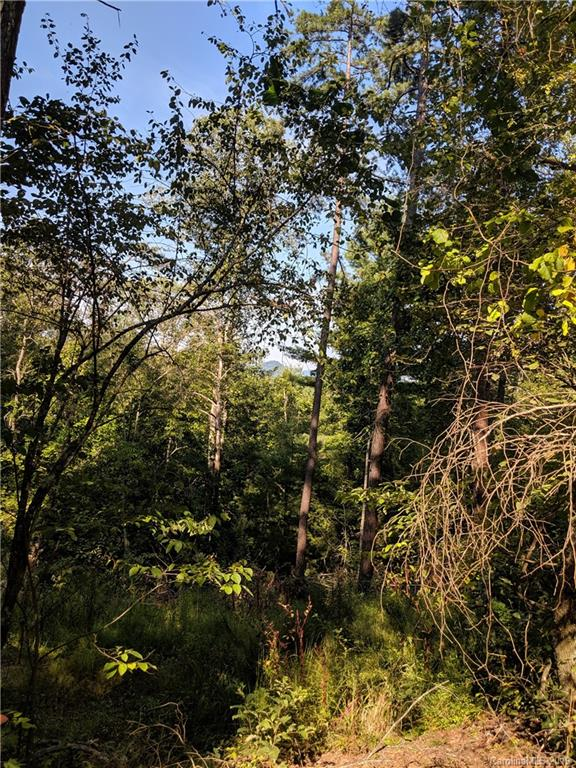 2176 Bear Creek Road