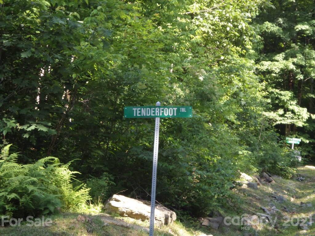 100 Tenderfoot Trail