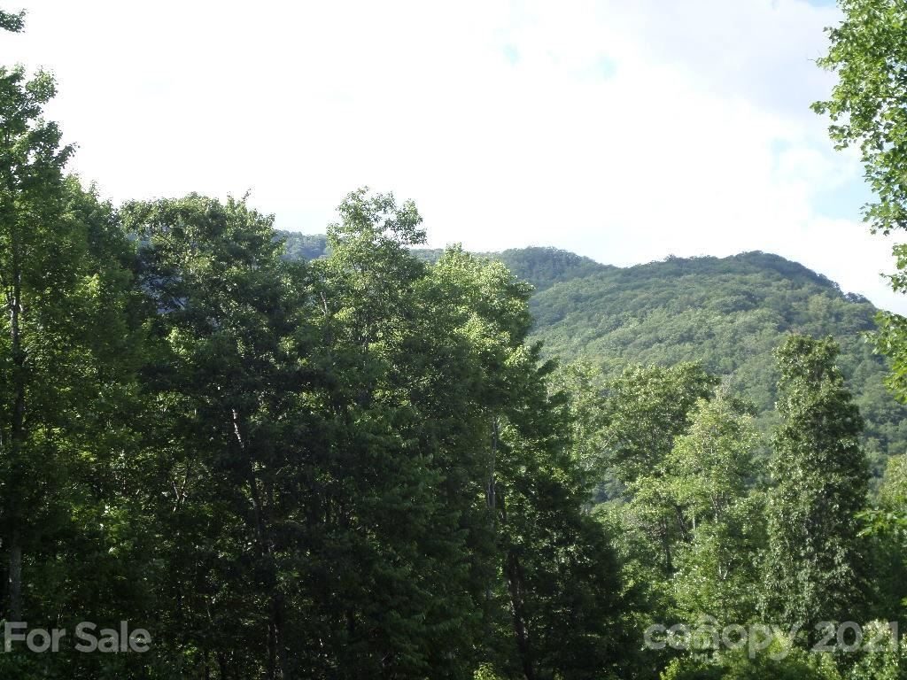 104 Tenderfoot Trail