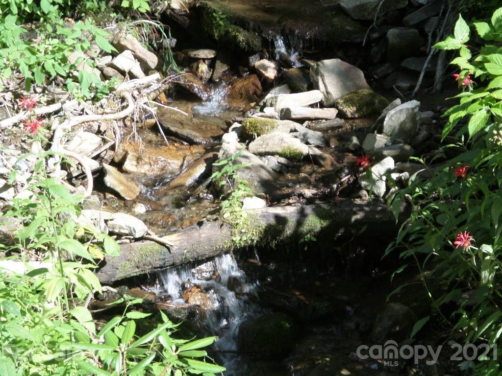 106 Tenderfoot Trail