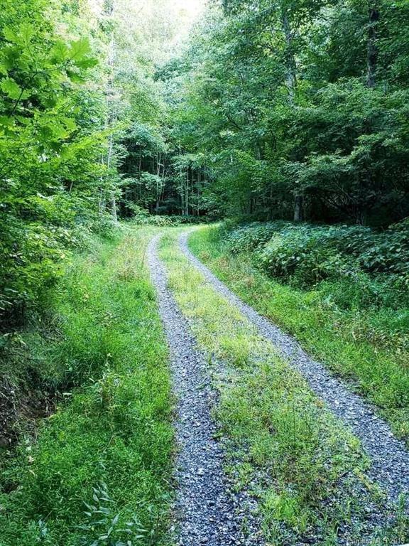 3106 Windy Gap Road